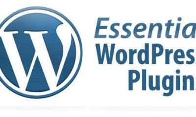 Direct download WordPress-Plugins